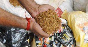 सुगंधित तंबाखू विक्रेत्यावर चिमूर शहरात धाड
